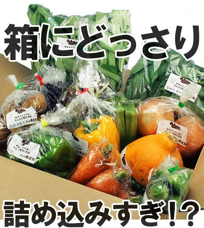 OCS野菜_750