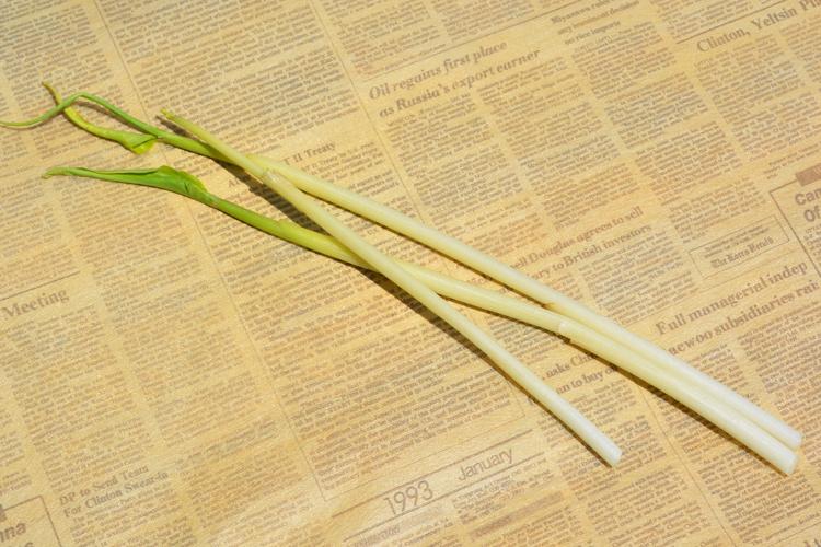 みんなの直売!野菜 『ミョウガダケ』