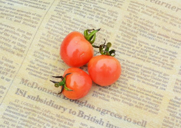 みんなの直売!野菜 『ミニトマト』レシピ追加♪