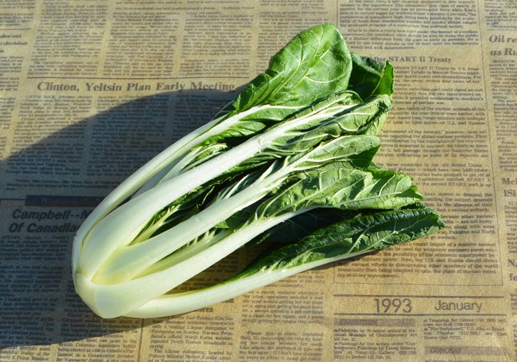 みんなの直売!野菜 『しろ菜』