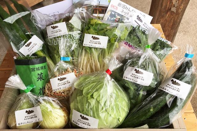毎週、旬なお野菜10種類をお届け!