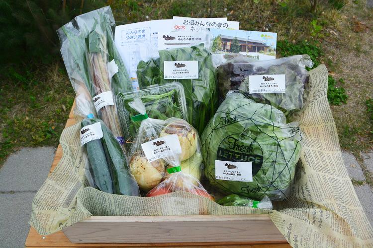 5月6日(土)に出荷した野菜はコチラです!