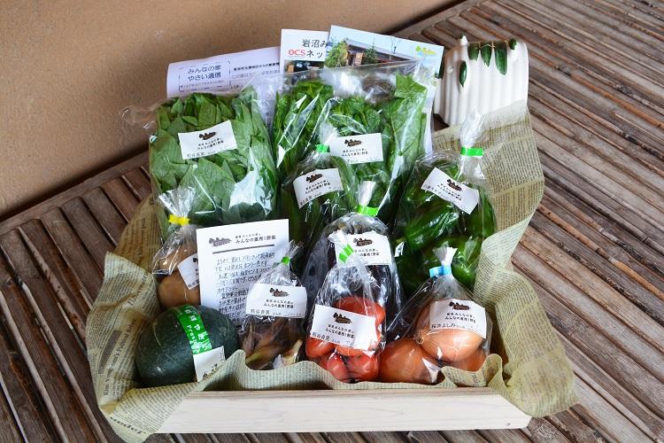 8月5日(土)に出荷した野菜はコチラです!