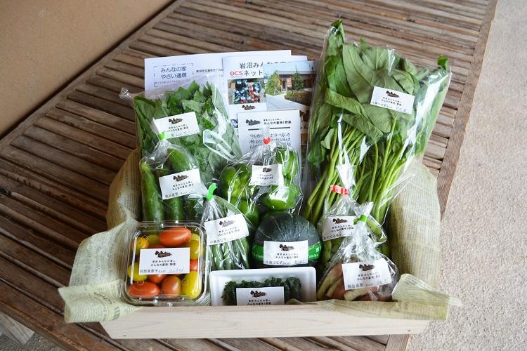 8月19日(土)に出荷した野菜はコチラです!