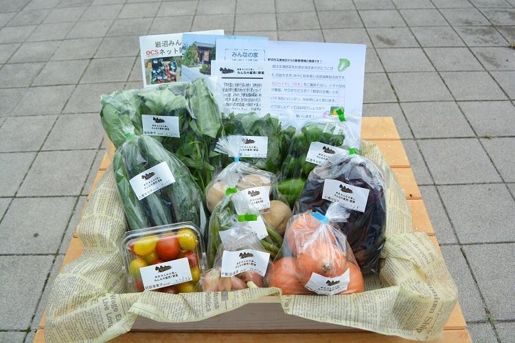 8月26日(土)に出荷した野菜はコチラです!