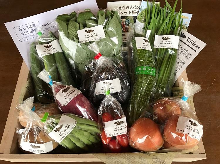 9月2日(土)に出荷した野菜はコチラです!