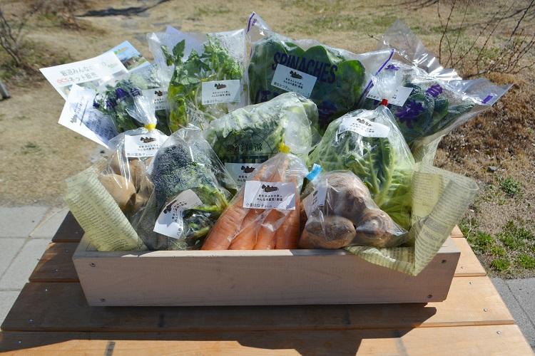 3月17日(土)に出荷した野菜はコチラです!