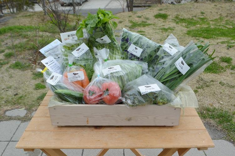 4月7日(土)に出荷した野菜はコチラです!