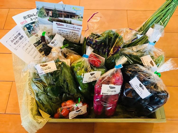 9月1日(土)に出荷した野菜はコチラです!