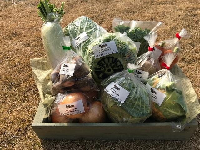 12月14日(土)に出荷した野菜はコチラです!