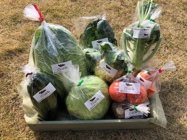 11月30日(土)に出荷した野菜はコチラです!